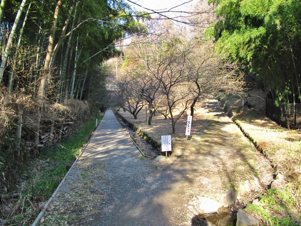 王禅寺その1 (16)