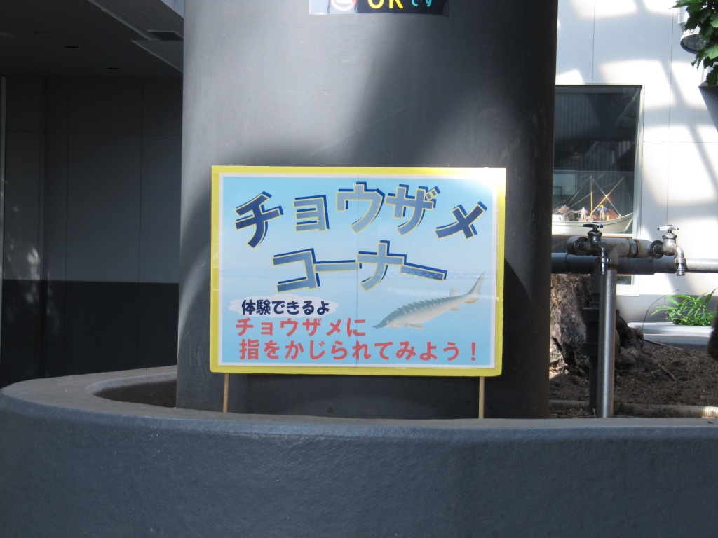 サーモン科学館 (14)