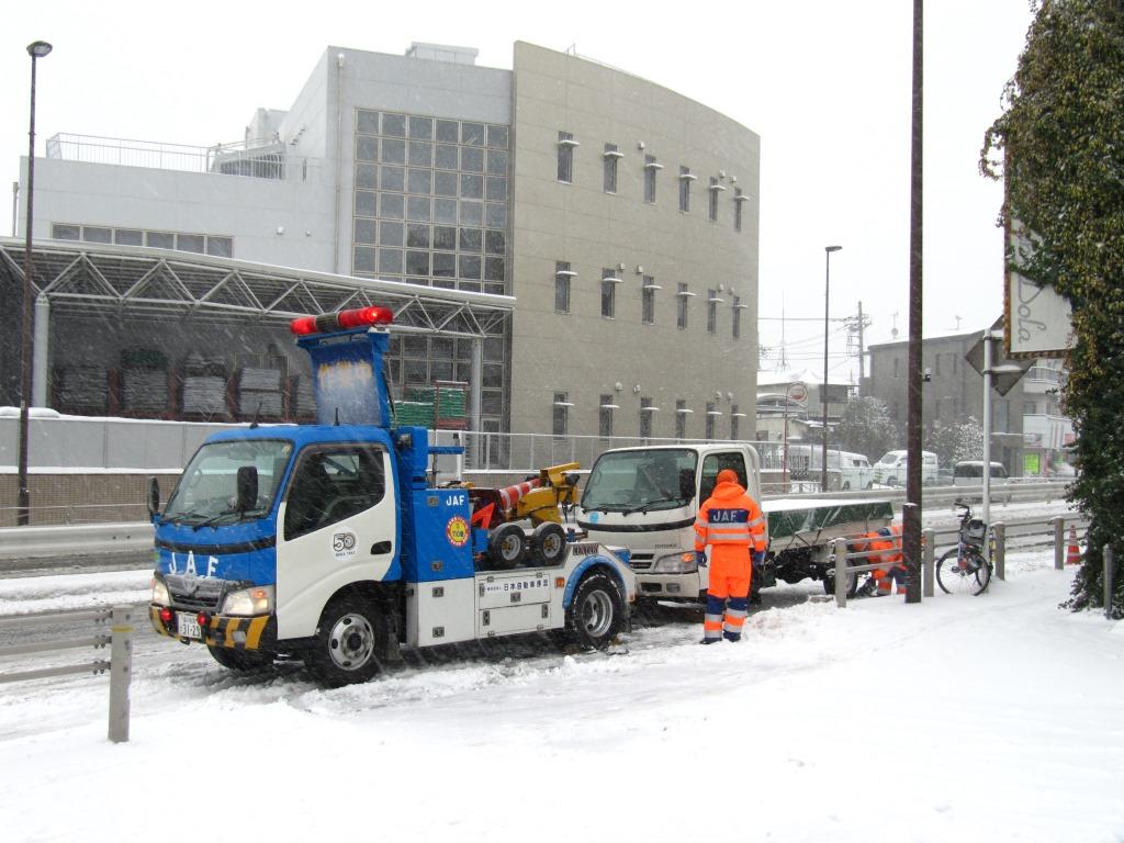 雪の散歩 (1)
