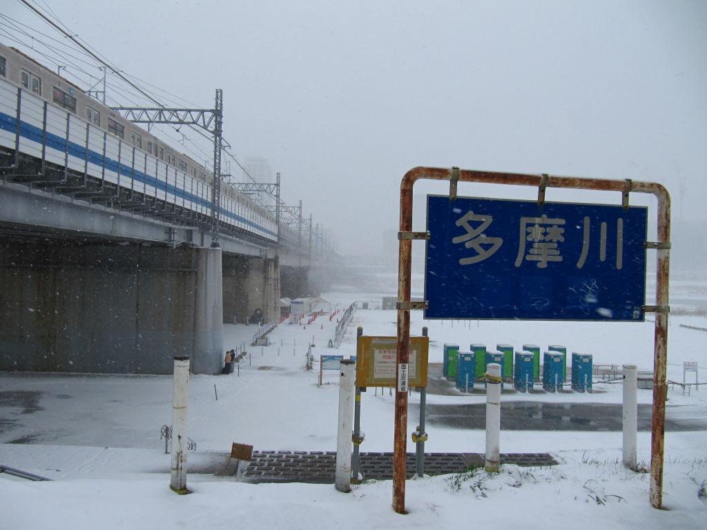 雪の散歩 (6)