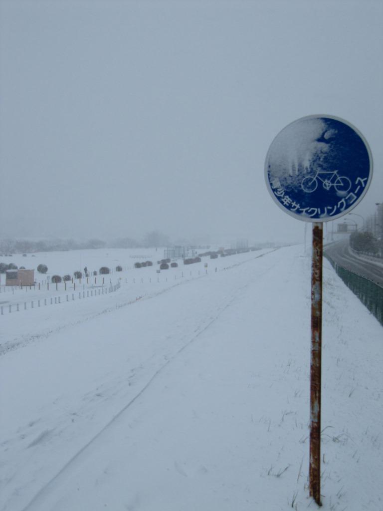 雪の散歩 (7)