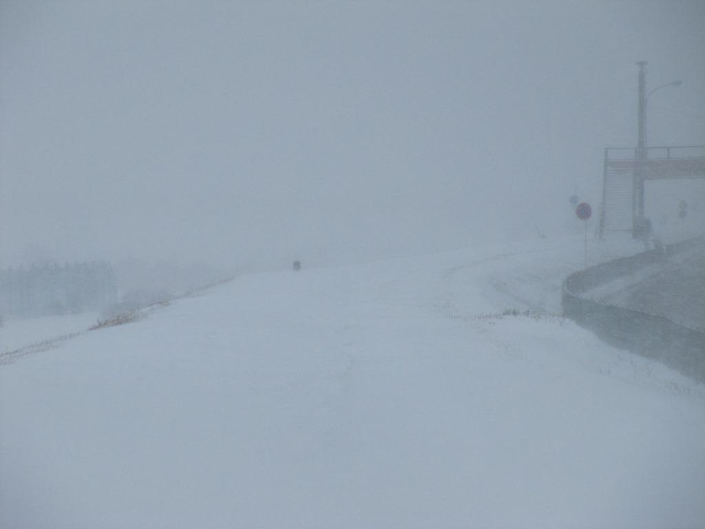 雪の散歩 (8)