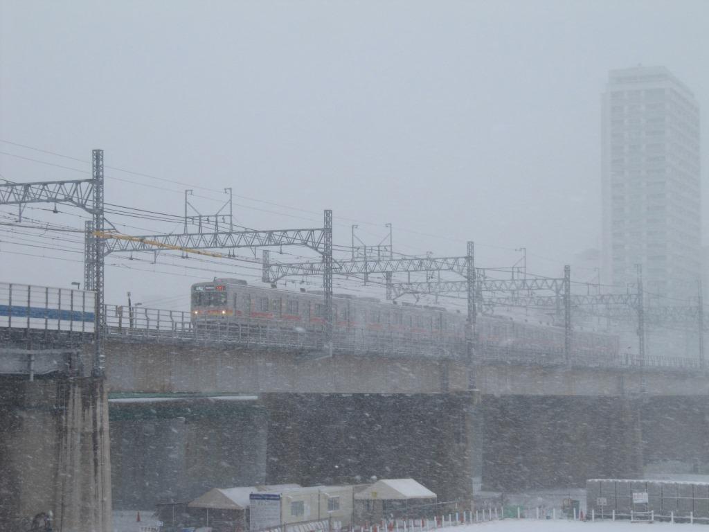 雪の散歩 (9)