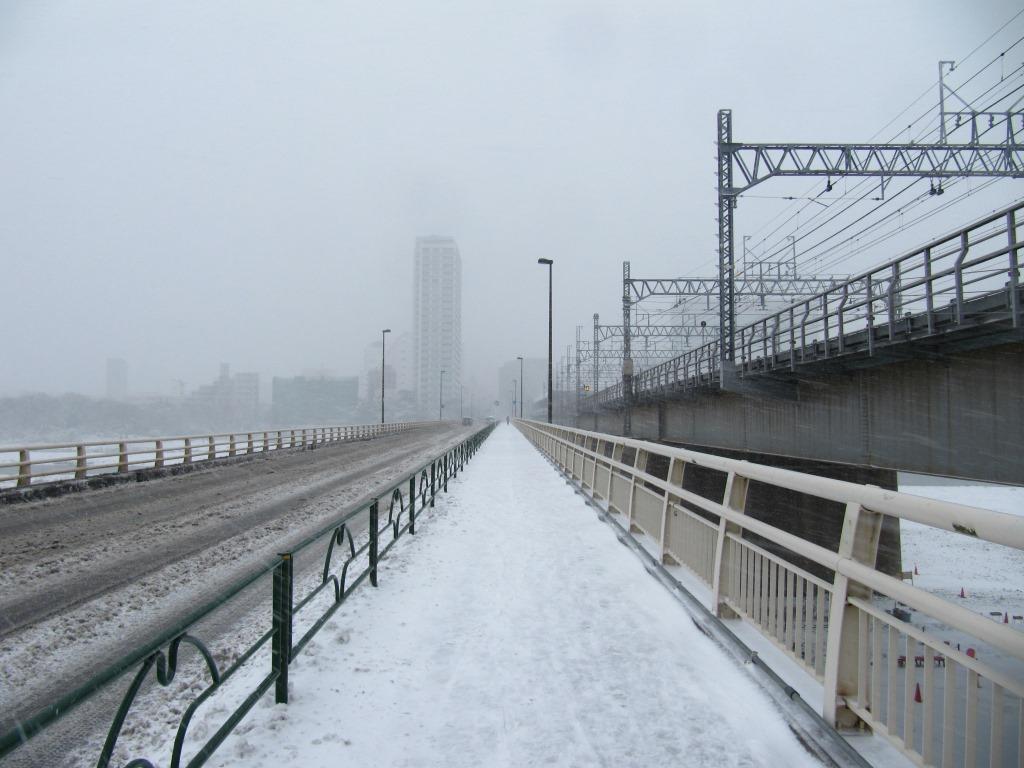 雪の散歩 (10)