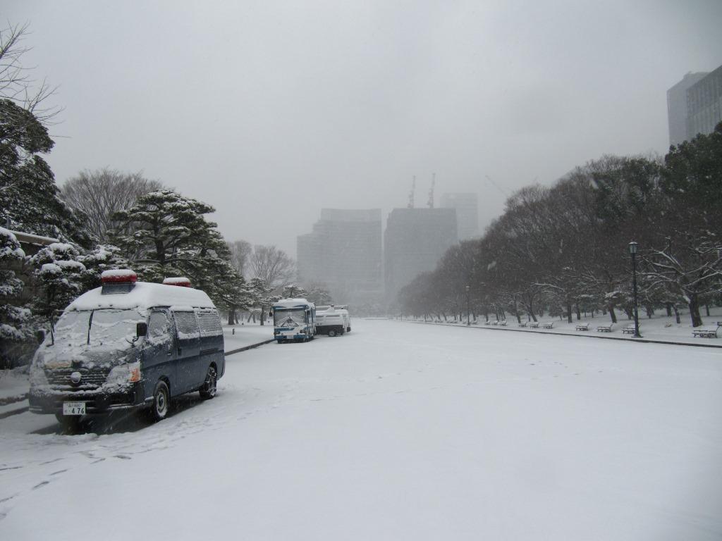 雪の散歩 (18)
