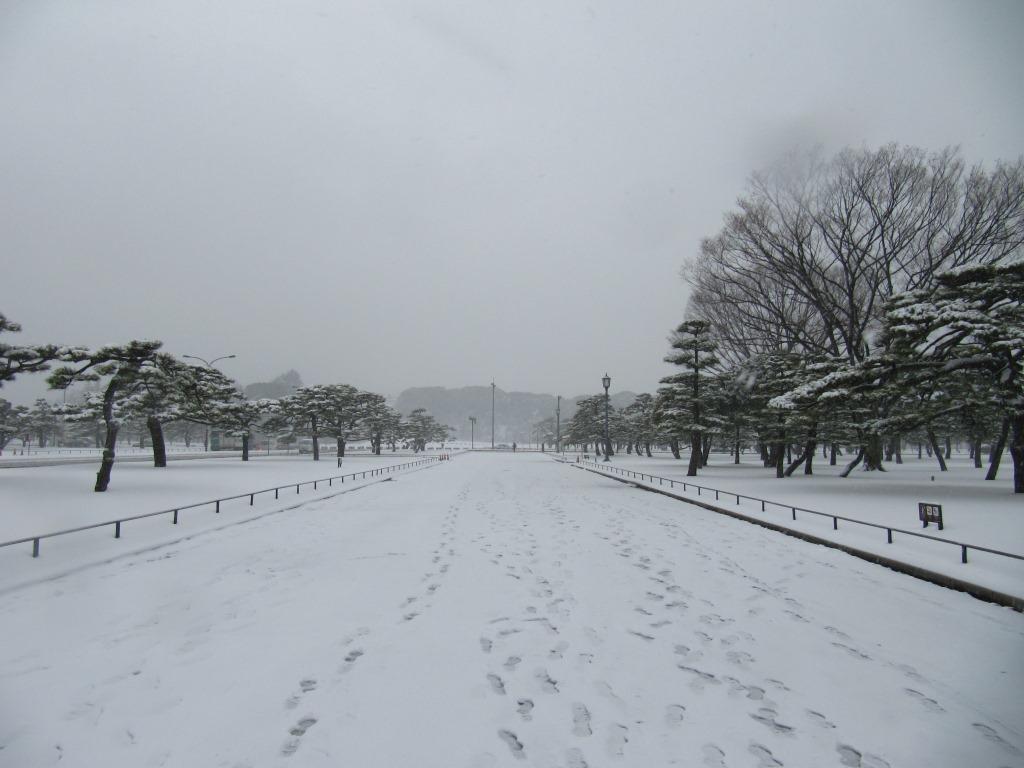雪の散歩 (19)