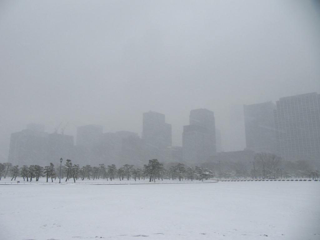 雪の散歩 (22)