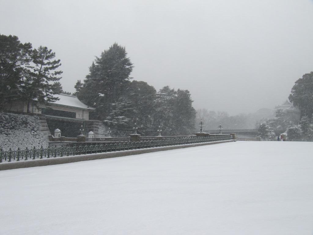 雪の散歩 (23)