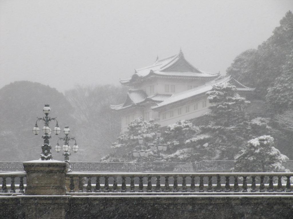 雪の散歩 (25)