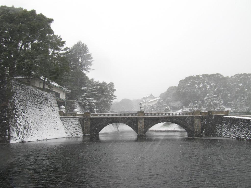 雪の散歩 (26)