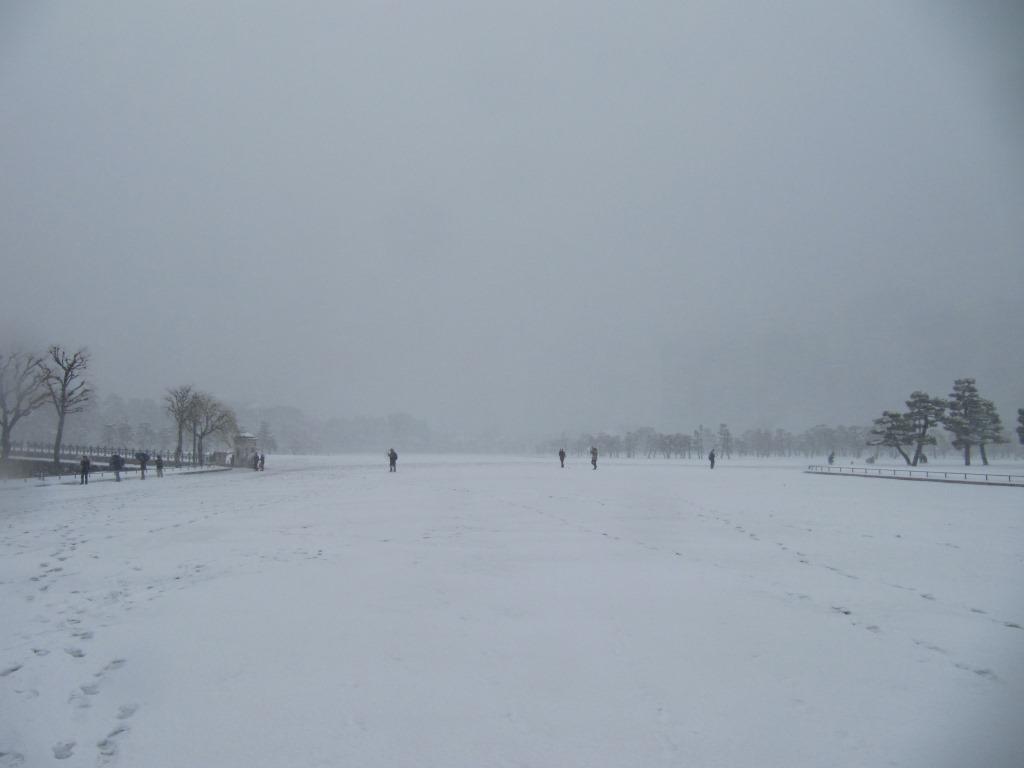 雪の散歩 (29)
