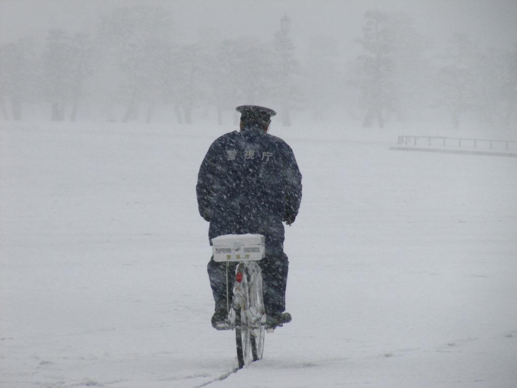 雪の散歩 (32)