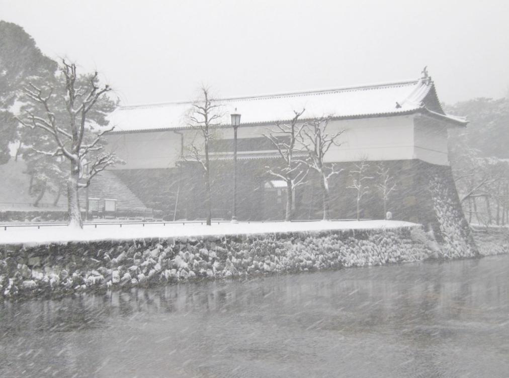 雪の散歩 (30)