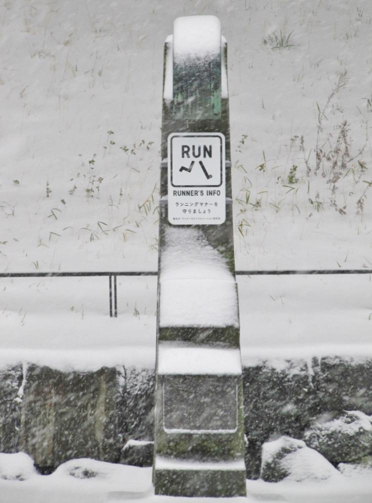 雪の散歩 (31)