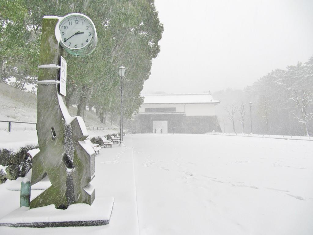 雪の散歩 (33)