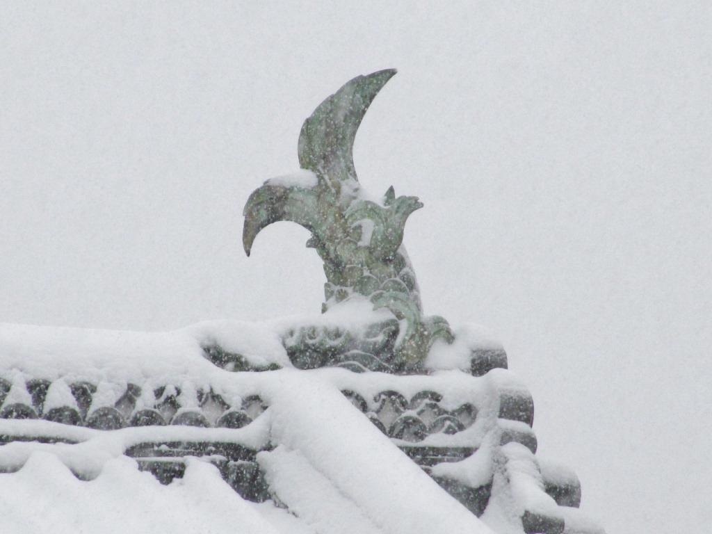 雪の散歩 (36)