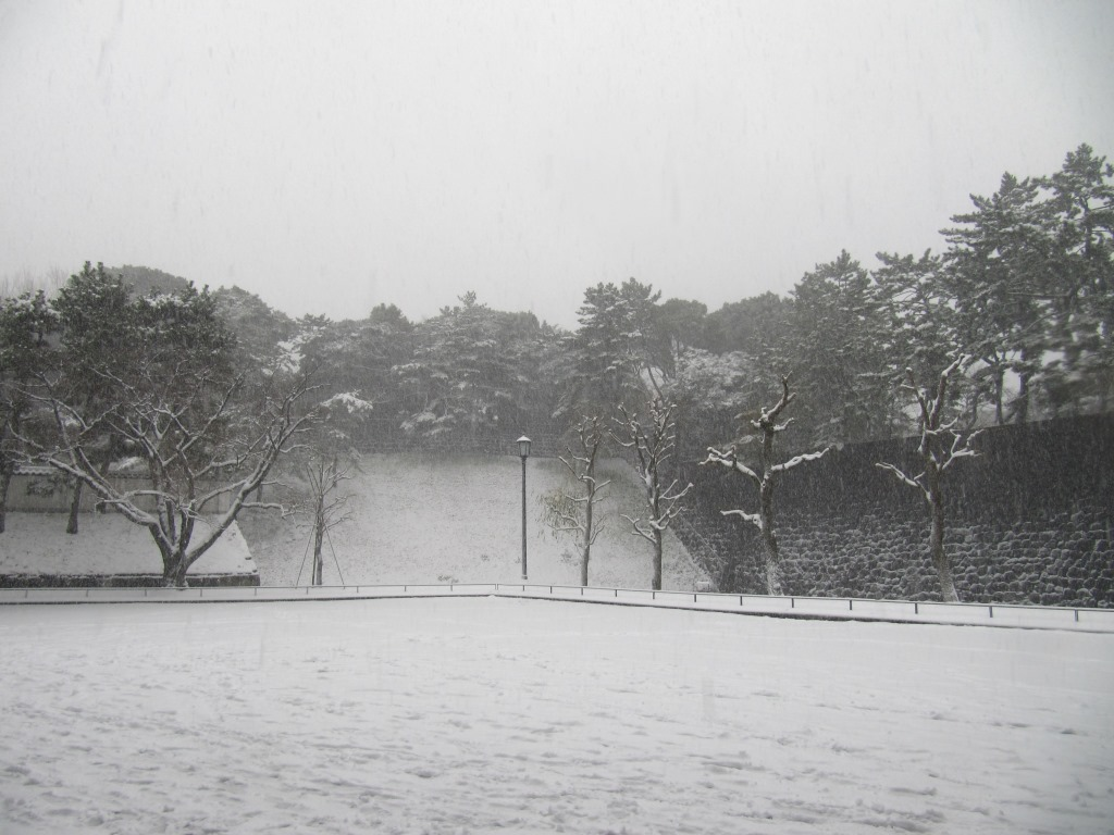 雪の散歩 (39)
