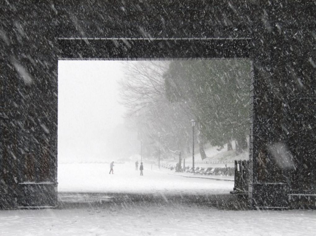 雪の散歩 (40)