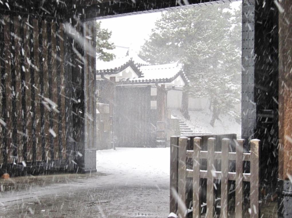 雪の散歩 (41)