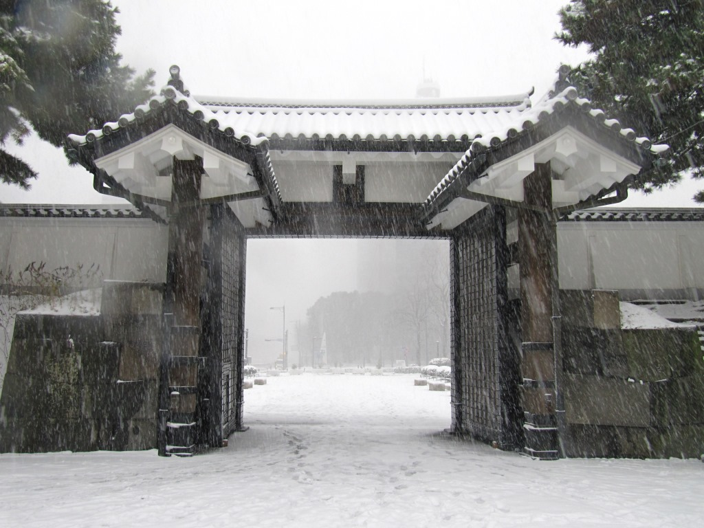 雪の散歩 (42)