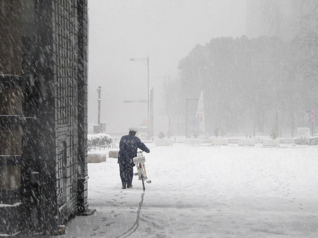 雪の散歩 (43)