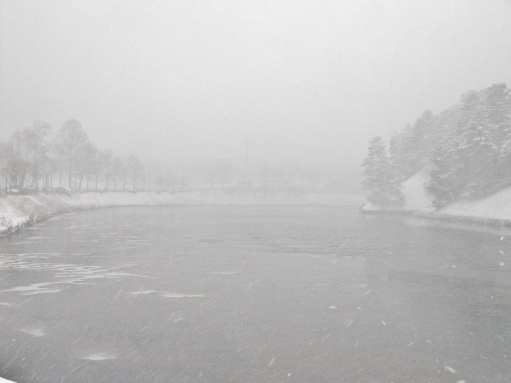 雪の散歩 (45)