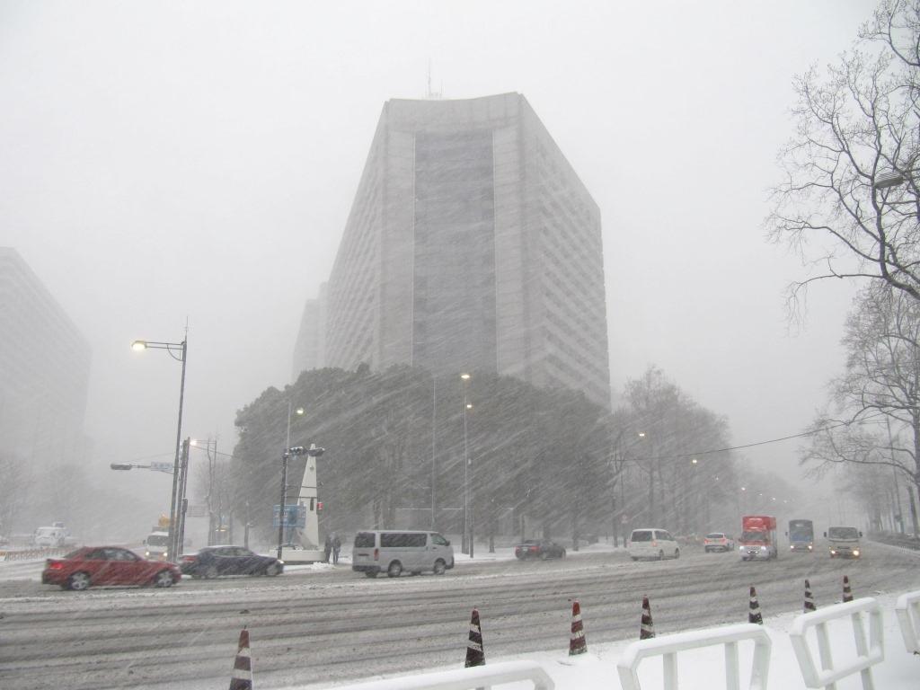 雪の散歩 (46)