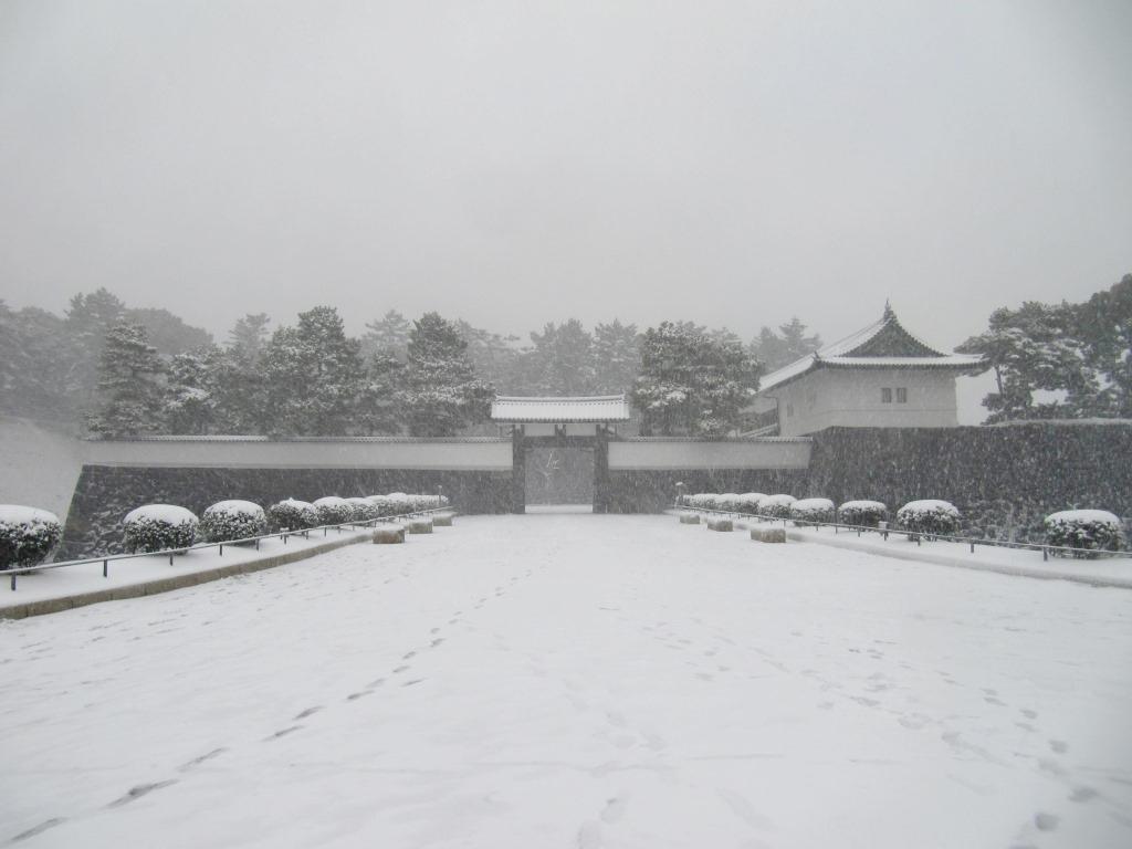 雪の散歩 (47)