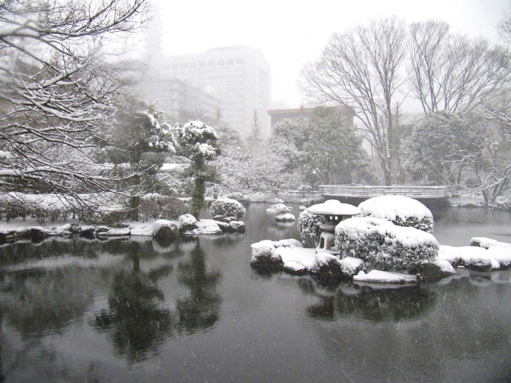 雪の散歩 (49)