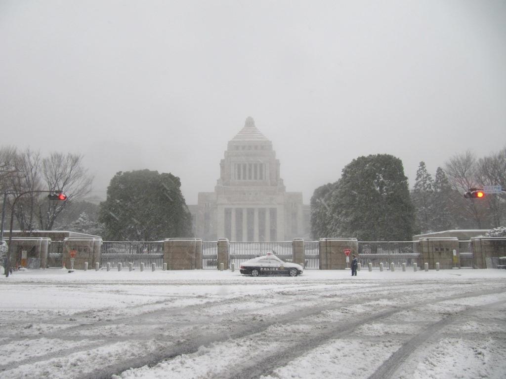 雪の散歩 (52)