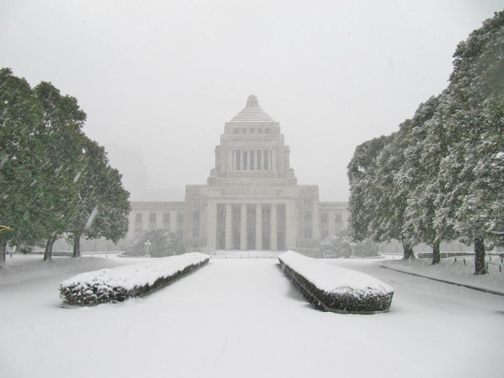雪の散歩 (53)