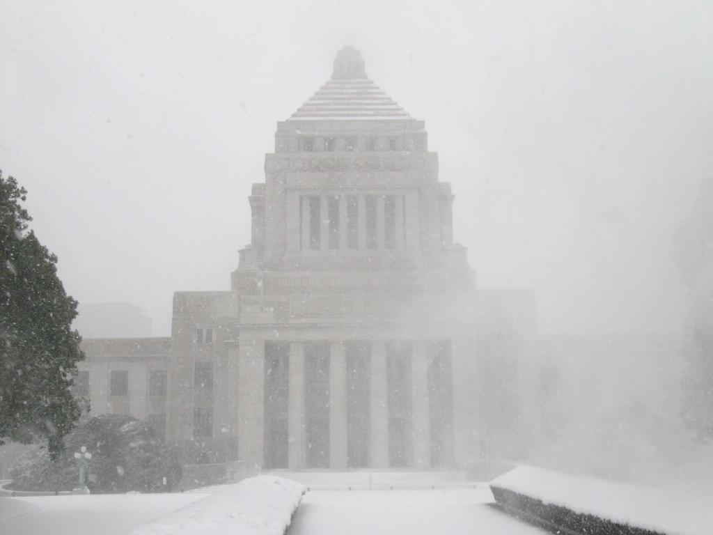 雪の散歩 (55)