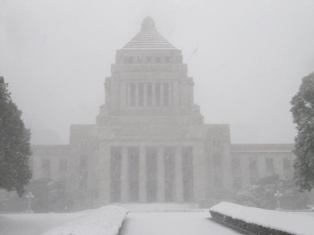 雪の散歩 (59)