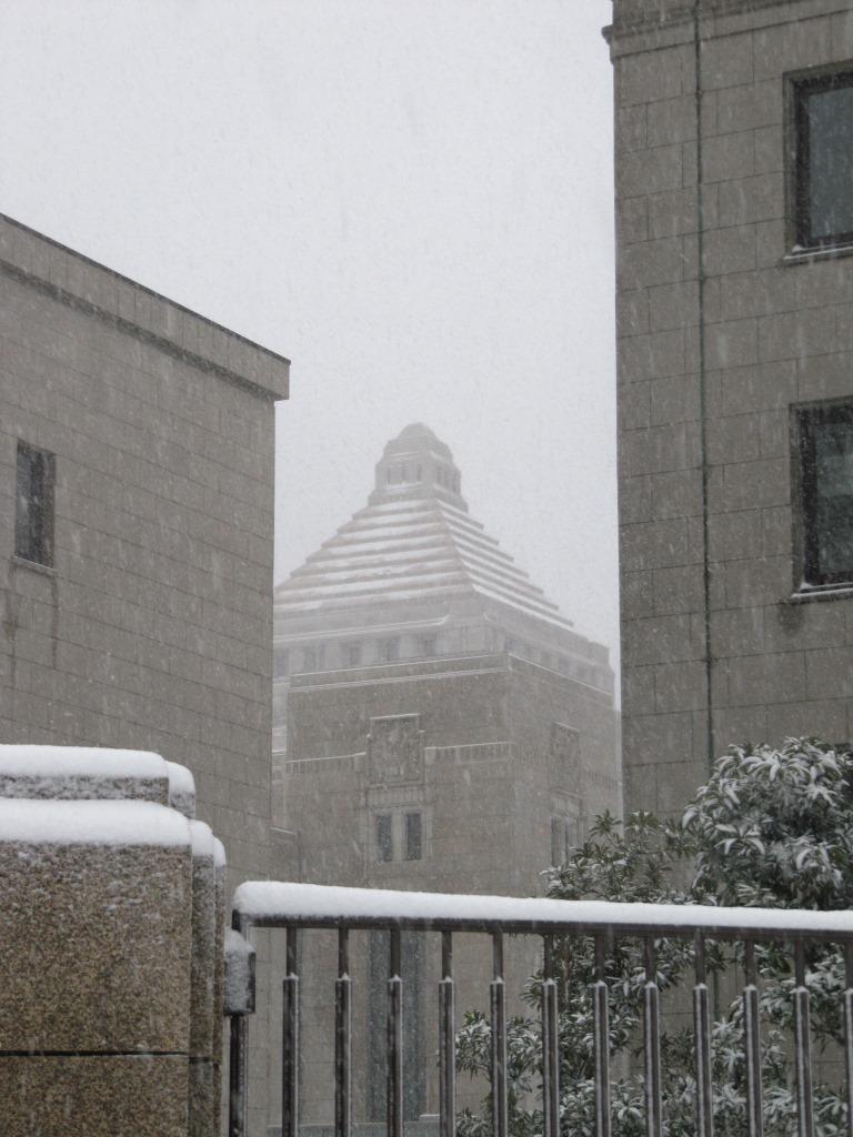 雪の散歩 (61)