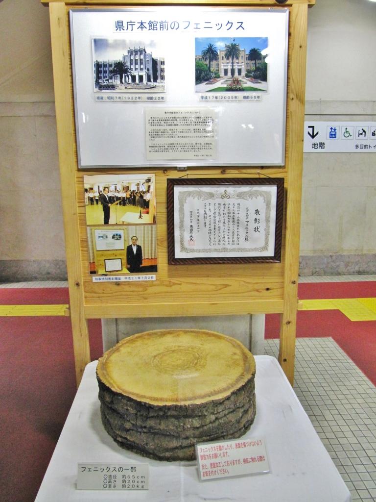 宮崎県庁 (2)