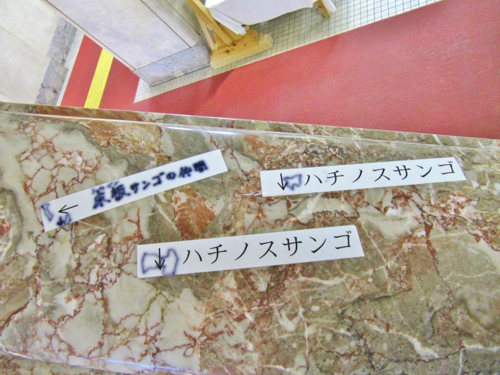 宮崎県庁 (5)