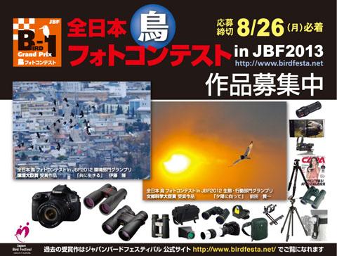 JBF2013BIRD-1