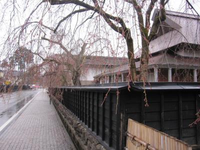 角館武家屋敷のさくらの風景4月30日朝