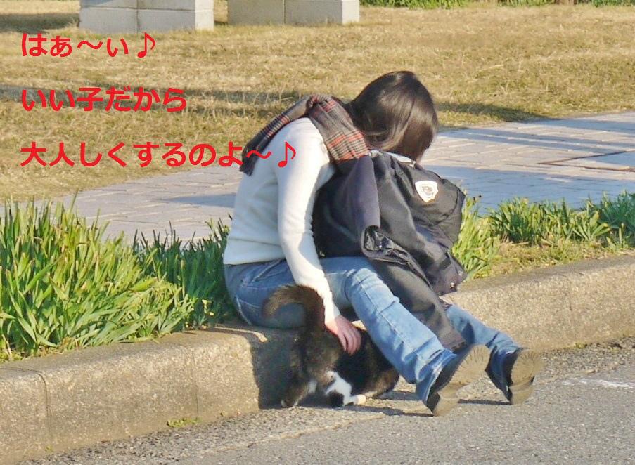 P1070793_1.jpg