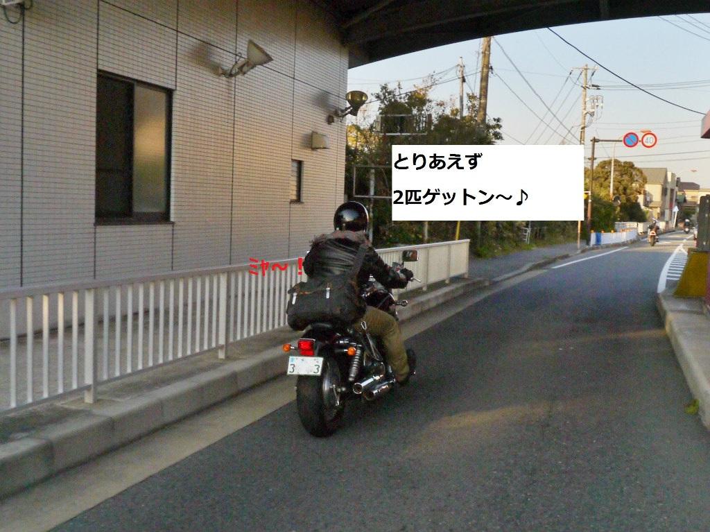 P1070805_2.jpg