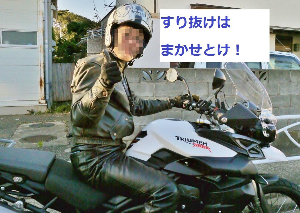 P1070808_1.jpg