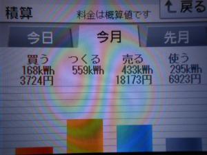 DSCN1133_convert_20130712214001.jpg