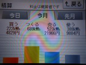 DSCN1151_convert_20130715213201.jpg