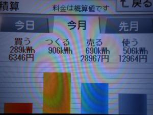 DSCN1182_convert_20130720235539.jpg