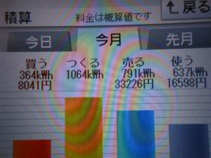 DSCN1191_convert_20130725215432.jpg