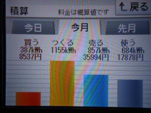 DSCN1195_convert_20130727220135.jpg
