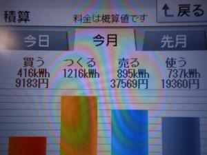 DSCN1200_convert_20130729205041.jpg