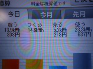 DSCN1201_convert_20130729205106.jpg