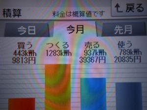 DSCN1206_convert_20130731212142.jpg