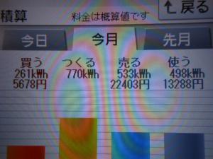 DSCN1258_convert_20130816213322.jpg